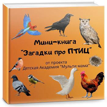 мини книга про птиц